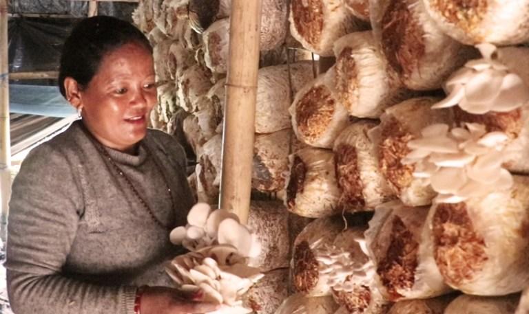 लघुवित्त कर्जाबाटै निर्धक्क जीवन अनि आफ्नै कमाई (गगन मायाको कथा)